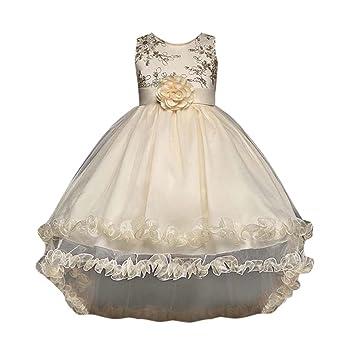 Vestidos para bebés Vestido de princesa de las muchachas de flor Fiesta de los niños Vestidos
