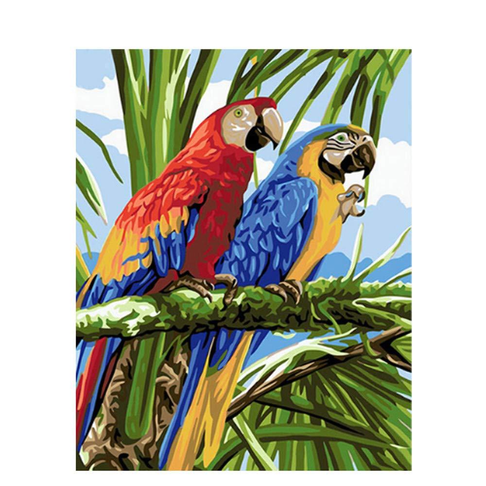 Malen Sie Nach Zahlen DIY Ölgemälde Für Erwachsene Erwachsene Erwachsene Rot Blau Papagei Wohnkultur Leinwanddruck Wandkunst-Framed B07Q127W2P | Schön und charmant  16053c