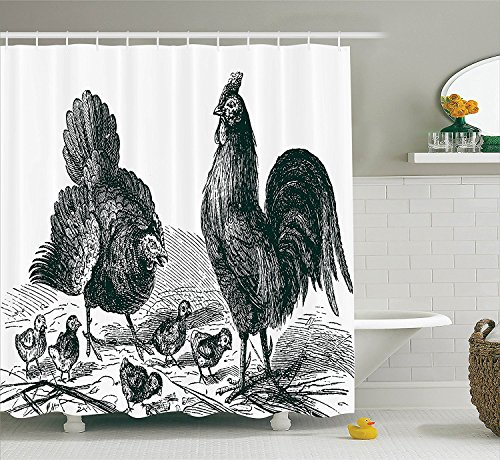 [Gallos Decor Collection Hen Rooster and Chicks Classical La Vie Dans La Nature 1890 Antique Drawing Effect Polyester Fabric Bathroom Shower Curtain Set with Hooks Black and] (Chick Magnet Costume Walmart)
