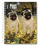 Download Pugs 2018 6 x 7.75 Inch Weekly Engagement Calendar, Animals Dog Breeds (Multilingual Edition) in PDF ePUB Free Online