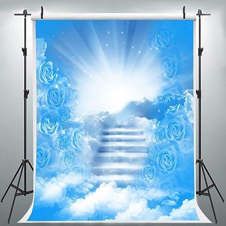 HXLU100 telón de Fondo de luz Sagrada para Escalera al Cielo, 6 x 9 pies, Fondo de Rosa Azul Cielo: Amazon.es: Electrónica