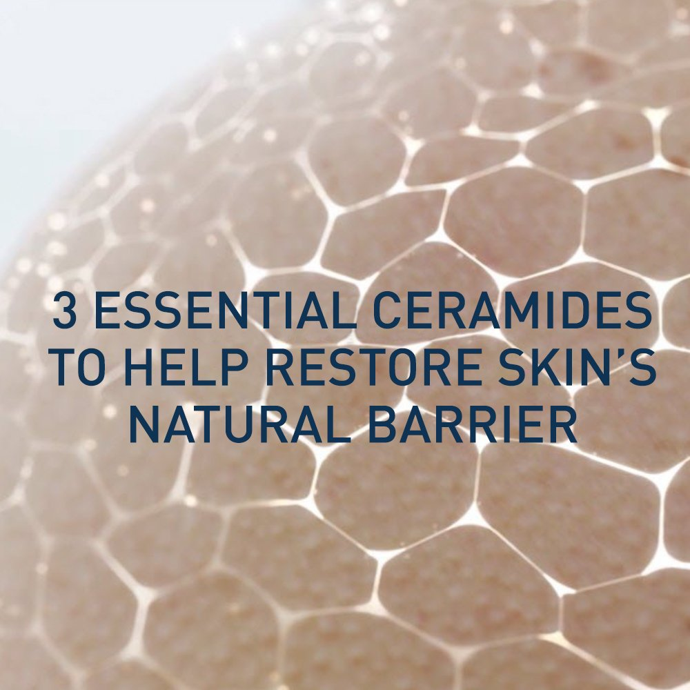 CeraVe Skin Renewing Night Cream - Multipurpose Night Cream, Face Moisturizer, Anti Aging Face Cream & Wrinkle Cream – Moisturizer for Face w Hyaluronic Acid & Niacinamide, 1.7 oz by CeraVe (Image #9)