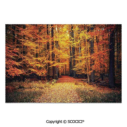 SCOCICI Place Mats Set of 6 Personalized Printed Non-Slip Table Mats Magical Fall Photo in National Park with Vivid Leaf Plant Eco Earth Mystical Theme for Dining Room Kitchen Table Decor