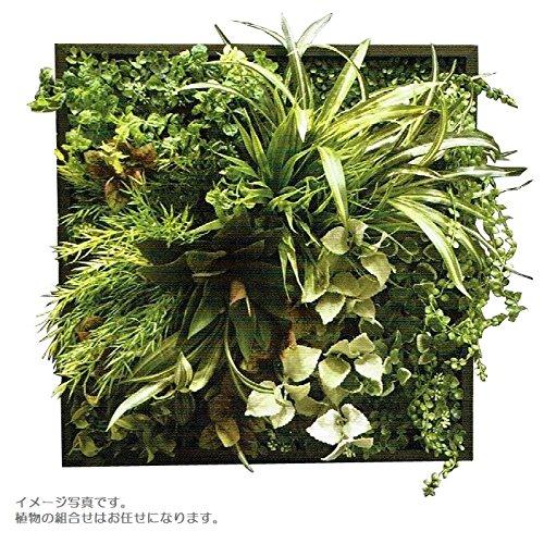 人工観葉植物 アーティフィシャルグリーンアレンジ壁面植裁 □53cm rg-021 B074FZBJ7G