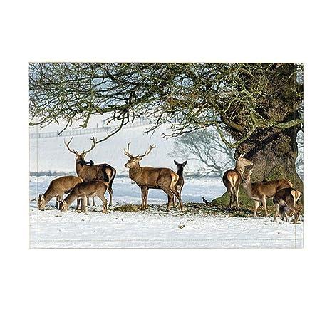 Deer in Winter Bath Rugs Non-Slip Floor Entryways Outdoor Indoor Front Door Mat