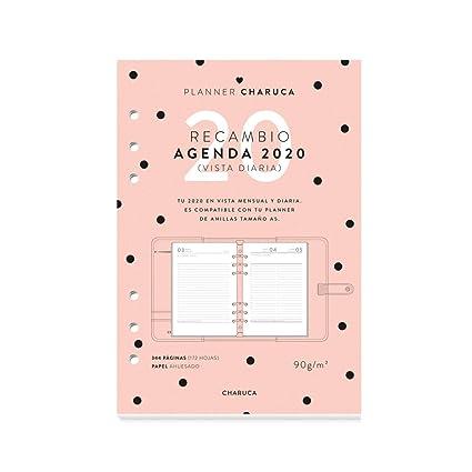 Recambio agenda 2020. Vista diaria. A5: Amazon.es: Oficina y ...