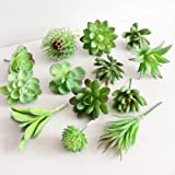 Dutch Brook 5Pcs Different Succulents Artificial Cactus Plants for Office Home Garden Decor (Sent Randomly) (1.Green)