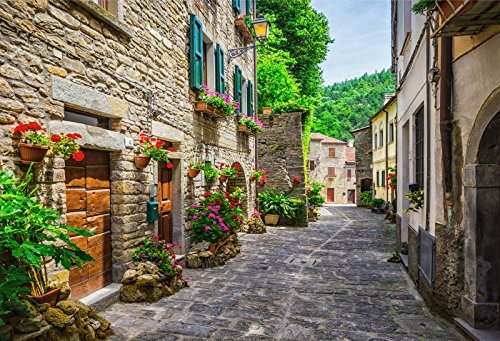 CSFOTO 7x5ft Italy Street Scenery Backdrop Photography Old Town Alley Stone House Flowers Brick Street Scenery Outdoor Village Building Travel Girls Kids Photo Studio Props Polyester Wallpaper