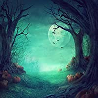 Duluda Halloween Night Pumpkin Moon 8X8FT Seamless Vinyl Photography Backdrop Customized Photo Background Studio Prop HW02C