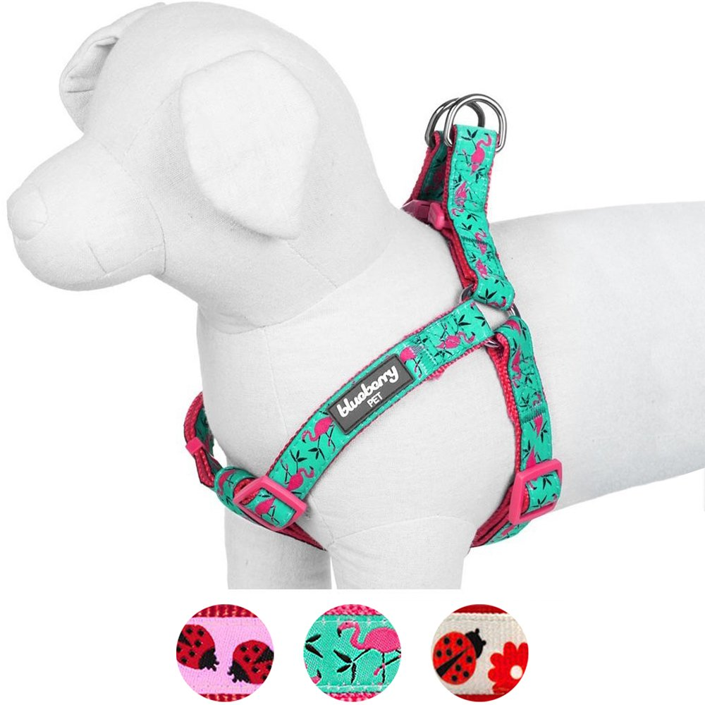 Blueberry Pet Step-in Pink Flamingo on Light Emerald Dog Harness, Chest Girth 16.5'' - 21.5'', Small, Adjustable Harnesses for Dogs