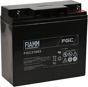 FIAMM Batería de Plomo-ácido FGC21803 (Ciclo Profundo): Amazon.es: Electrónica