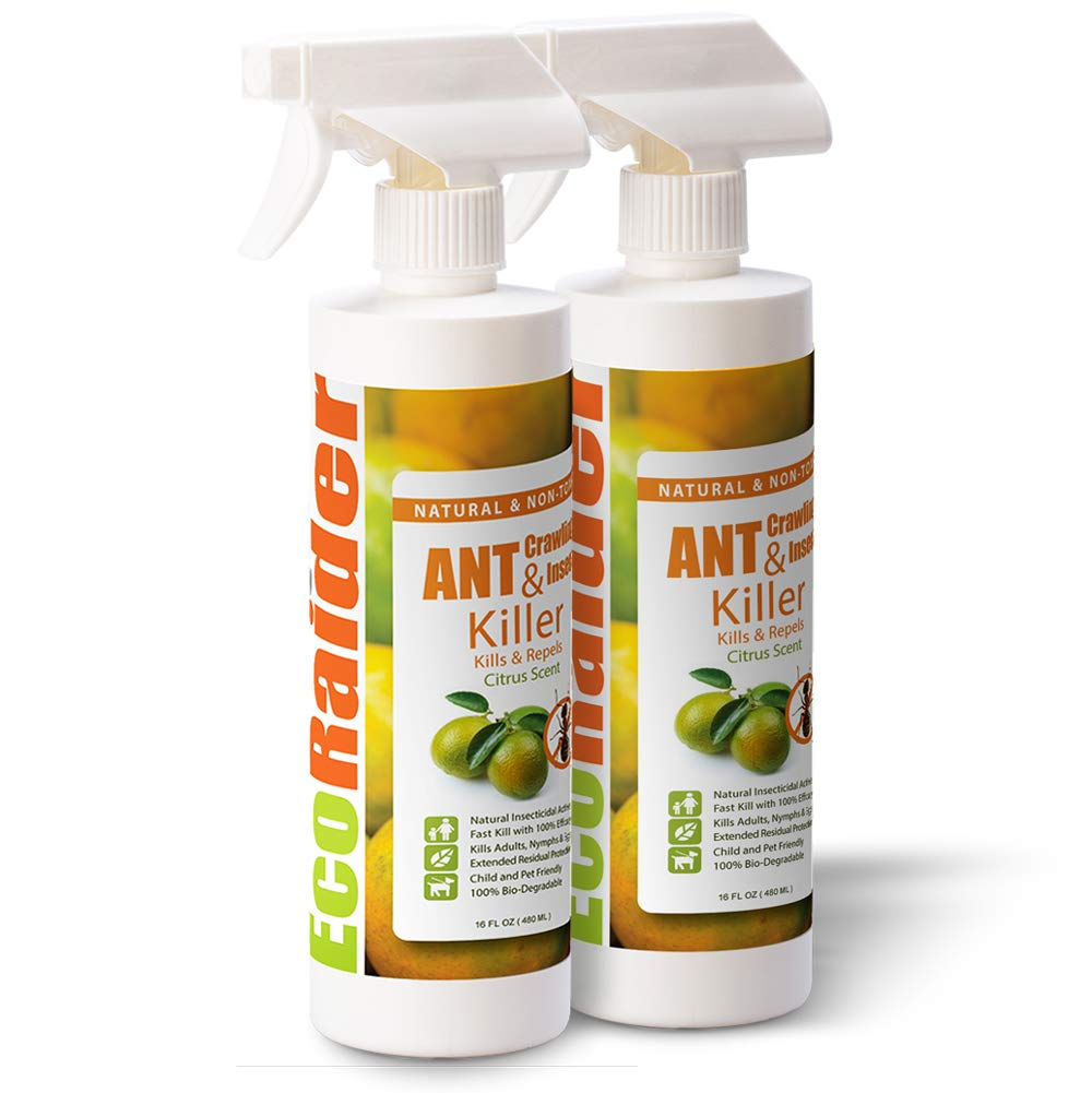 EcoRaider Ant Killer & Crawling Insect Killer (16OZx2)