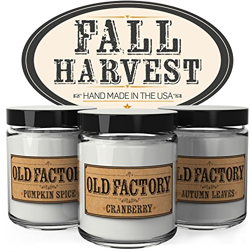 Wick Good Candles (Scented Candles - Fall Harvest - Set of 3: Pumpkin Spice, Cranberry, and Autumn Leaves - 3 x 4-Ounce Soy Candles - Each Votive Candle is Handmade in the USA with only the Best Fragrance Oils)