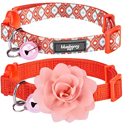 Blueberry Pet Spring Pack of 2 Cat Collars, The Power of All in One Perfect Orange Adjustable Breakaway Cat Collar with Bell & Detachable Flower, Neck 9