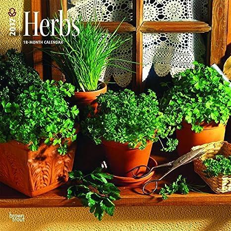 Calendario 2017 hierbas aromáticas - Cocina - perejil ...