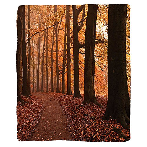 VROSELV Custom Blanket Canopy Fall Season Hiking Walkway Enchanted Forest Soft Fleece Throw Blanket