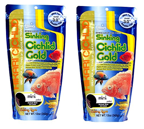 (2 Pack) Hikari 12-Ounce Sinking Cichlid Gold Pellets for Pets, Mini