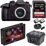 PANASONIC LUMIX GH5s Body C4K Mirrorless Camera and Ikan DH5e 5 4K Signal LCD Field Monitor Bundle
