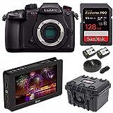 "PANASONIC LUMIX GH5s Body C4K Mirrorless Camera and Ikan DH5e 5"" 4K Signal LCD Field Monitor Budle"