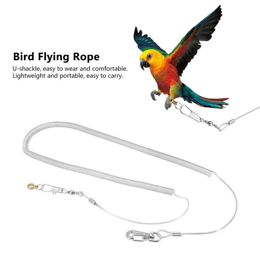 color aleatorio 6.5MM + 6M Kits de correas para p/ájaros cuerda de entrenamiento de vuelo al aire libre de la banda de vuelo antipreparador de loro de 6 m para p/ájaros y loros de tama/ño peque/ño