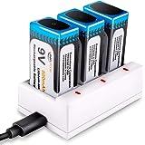 Keenstone 9v 電池 充電式 3個 リチウムイオン充電池 800mAh 006p カメラ/時計/ラジオ/おもちゃ電池 3ポート充電器とUSBケーブル付き