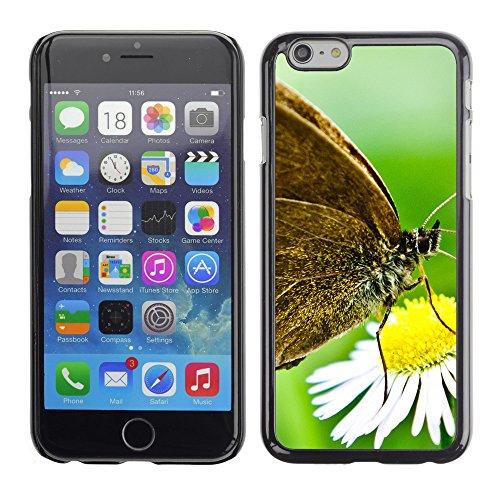 "Premio Sottile Slim Cassa Custodia Case Cover Shell // V00003066 papillon sur une marguerite sauvage // Apple iPhone 6 6S 6G 4.7"""