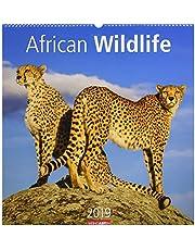 African Wildlife - Kalender 2019