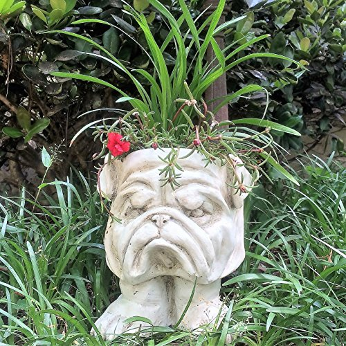 Homestyles 9 in. Antique White Bulldog Muggly Mascot Animal Statue Planter Holds a 3