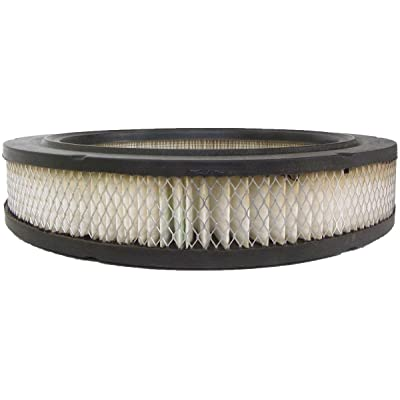 Luber-finer AF260 Heavy Duty Air Filter: Automotive