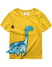 VYU Boys Long Sleeve Dinosaur T Shirt Kids Cotton tee Tops Size 2-8