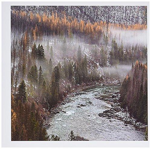 (3dRose Larch Trees, Flathead River, Montana, USA Greeting Cards, 6