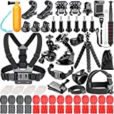 Neewer 83-In-1 Action Camera Accessory Kit for GoPro Hero Session/5 Hero 3 3+ 4 5 SJ4000 5000 6000 DBPOWER AKASO VicTsing APEMAN WiMiUS Rollei QUMOX Lightdow Campark Sony Sports DV and More