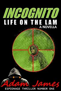 INCOGNITO: Life on the Lam: A Novella -- Book One of Four (Espionage Thriller Number One)