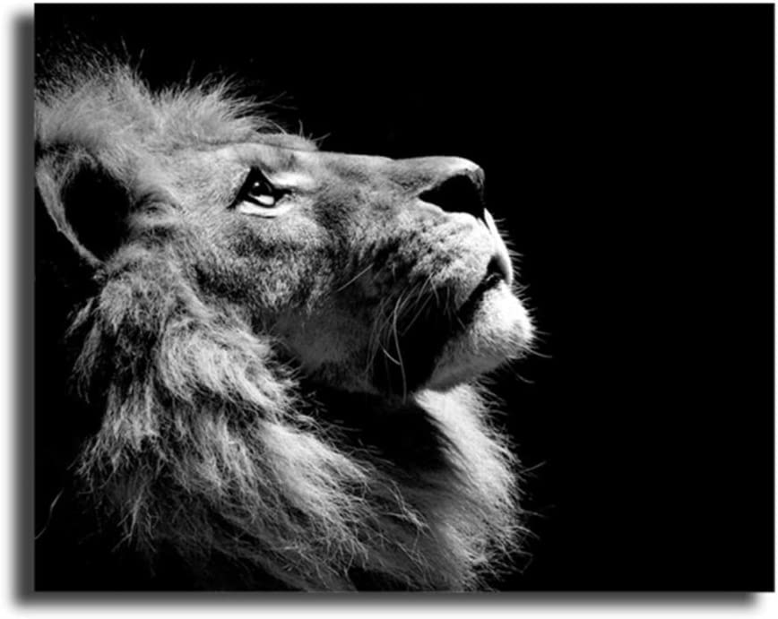 canvas art wall decor Black and White Lion Animals Decoration Canvas Painting For Bedroom Living Room Home Wall Pictures Decor Artwork 30x40cm Framework