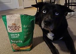 Amazon.com : NATURAL CHOICE Tartar Control Adult Biscuits