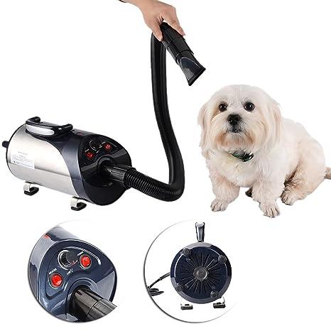 yunt – Tendedero secador Silencioso 2800 W para perro/gato de mascotas con motor (