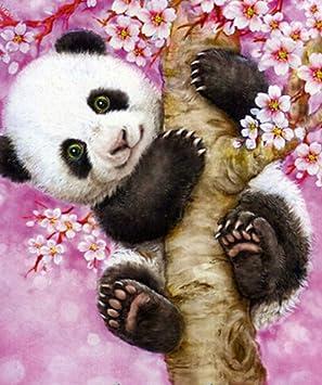 Jiaoyk Peinture Par Numero Enfant Dessin Animé Petit Panda
