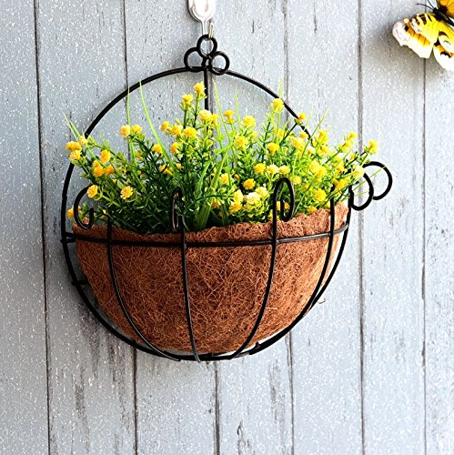 Candyqueen 1Pcs Hanging Wall Planter Iron Wall-Mounted planter Beautiful Pot Flower Pot Coconut Inner