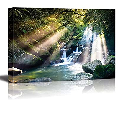 Lovely Expertise, That You Will Love, Mountain Stream in Forest with Sun Beam Passing Through Wall Decor