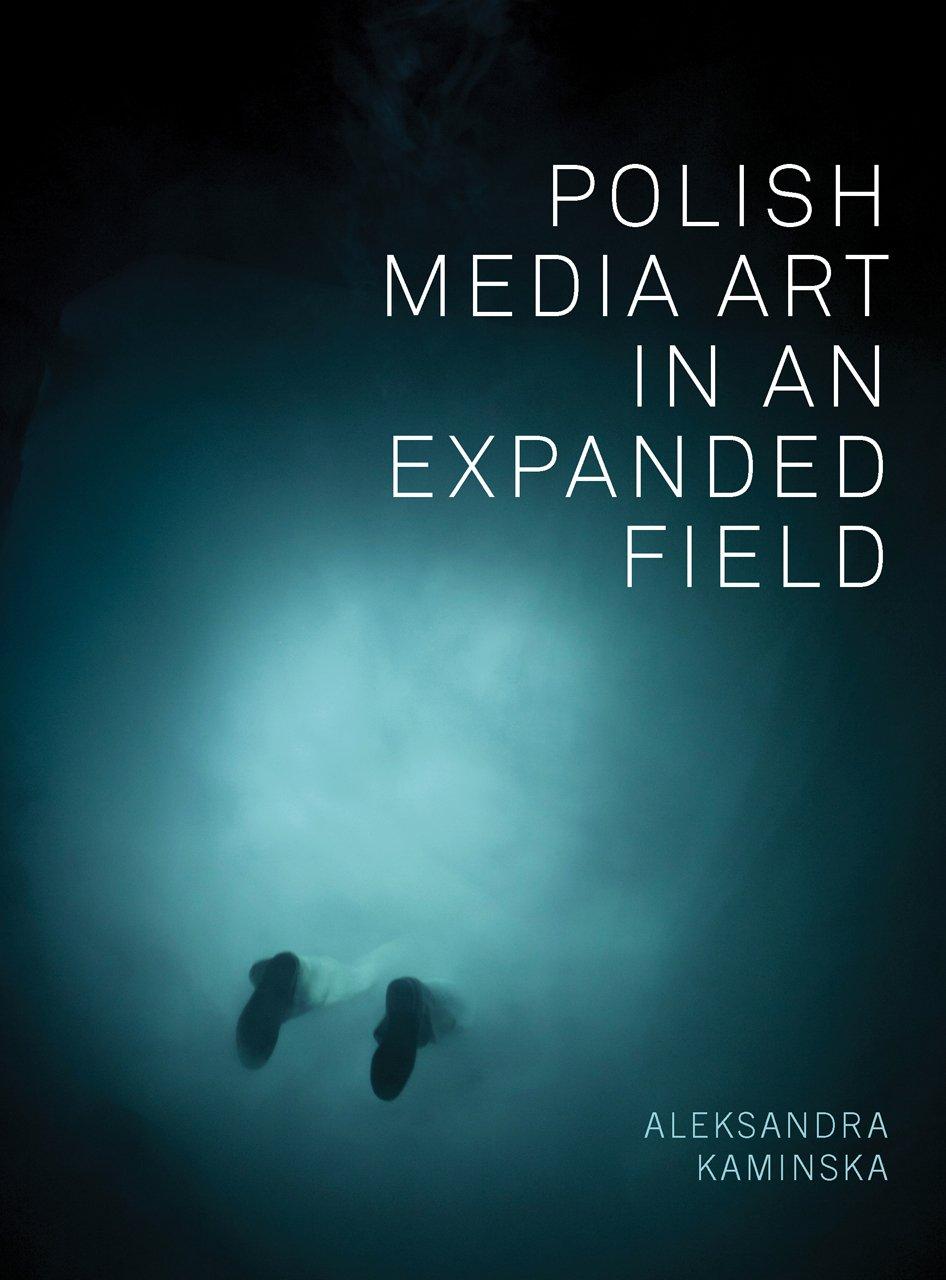 Read Online Polish Media Art in an Expanded Field ebook