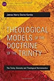 Theological Models of the Doctrine of the Trinity: The Trinity, Diversity and Theological Hermeneutics (Global Perspectives)