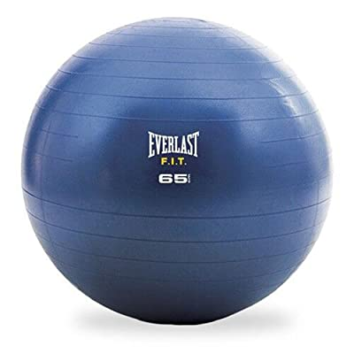 Everlast Stability Ball & pump, balle