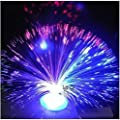 DierCosy Colour Changing Fibre Optic Fountain - Night light Calming Lamp