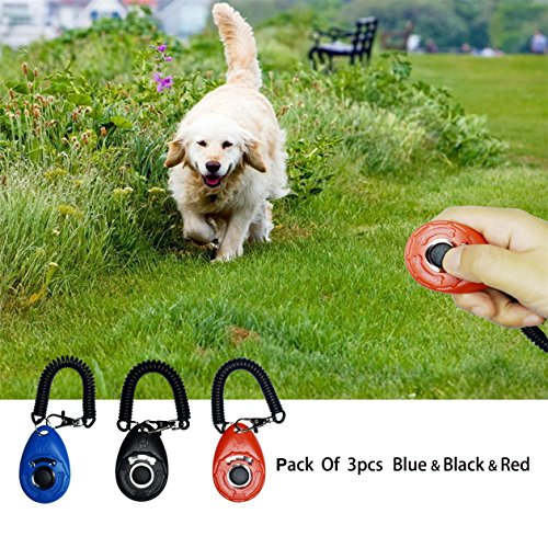 Dog Training Clicker,Pet Training Clicker with Wrist Strap,Black + blue + red by CXP Good Goods