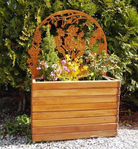 Jardinera HELA con rosas rejilla grande (sin plantas): Amazon.es ...