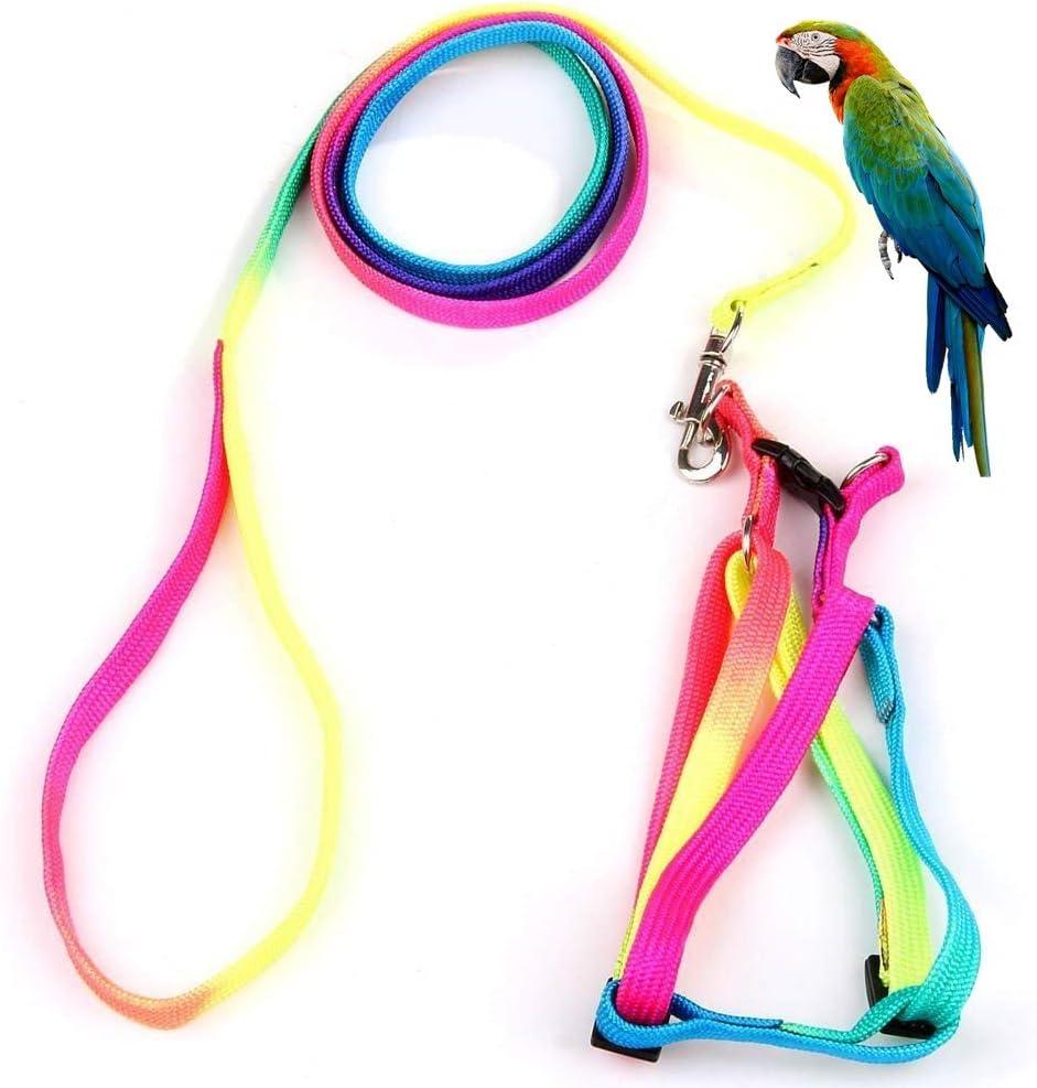 Arnés y correa para pájaros con hebilla para mascota, diseño de ...