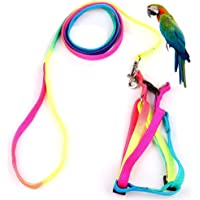 Pet Bird Harness and Leash with Buckle Adorable Rainbow Design Safe Parrot Leash Pet Harness Outdoor Adjustable Anti Bite Training Rope for Macaw Large Size Bird (1cm × 47.24in)