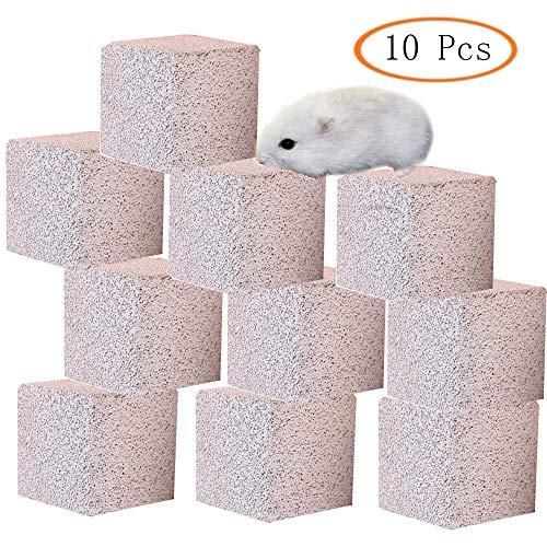 Hamster Chew Toy Lava Teeth Grinding Square Stone For Hamsters Chinchillas and Rabbits Mineral Stone Calcium Chew Toy for Small Animal(Pack of 10)