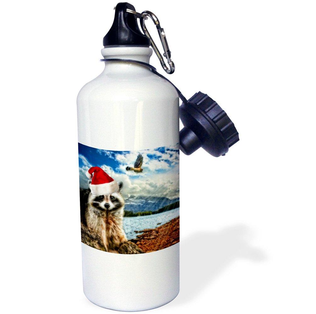 3dRose wb/_203024/_1 Christmas Raccoon In A Santa Hat Mountain Wildlife Sports Water Bottle 21 oz Multicolor