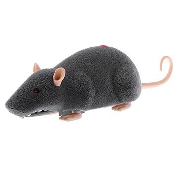 RC Elektrische Ferngesteuerte Ratte Maus für Baby Kinder Spielzeug AUS DE Neu Spielzeug Katzen